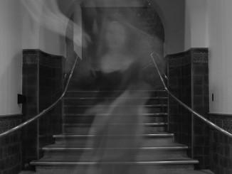 Fantasmes a l'Institut