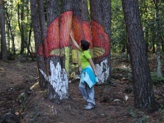 L'ou de reig al Bosc pintat de Poblet - Foto: YouMeKids