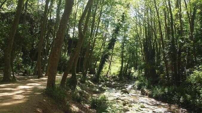 Riera d'Arbúcies - Foto: Som de pícnic