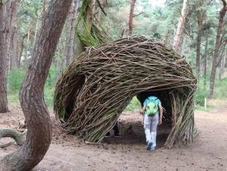El bosc màgic ple de construccions amb branques - Foto: YouMeKids