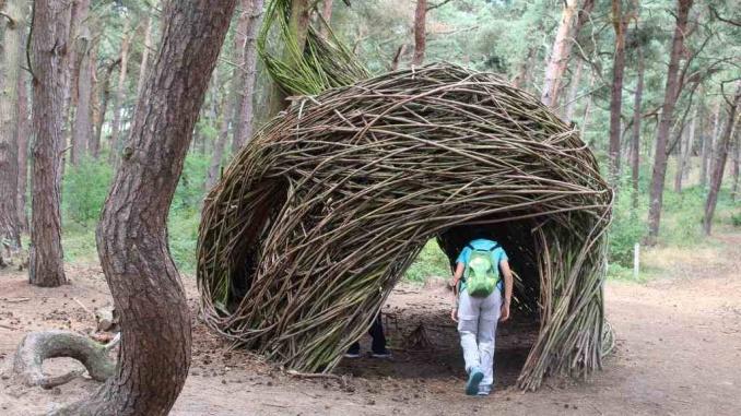 Bosque mágico en Bosland - Foto: YouMeKids