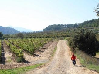 De camí cap el Castell de Milmanda - Foto: YouMeKids