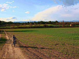 Camins rurals a Vistabella amb l'esglèsia de Jujol de fons- Foto: YouMeKids