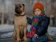 Amic dels nens  ©Perdidus
