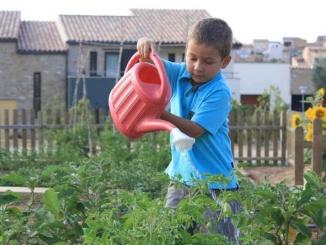 Fent d'hortolà al Vilar Rural d'Arnes - foto: YouMeKids