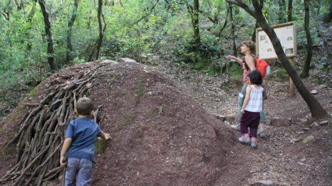 Carbonera al Bosc de Poblet - Foto: YouMeKids