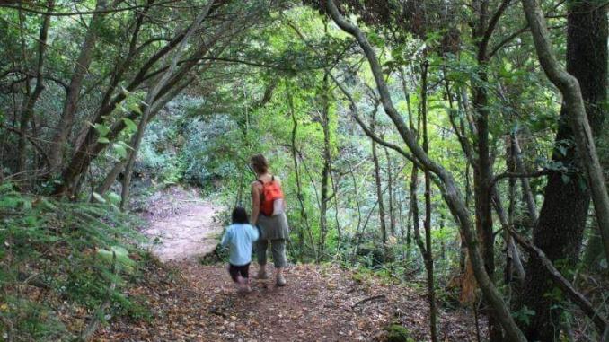 Bosc de Poblet - Foto: YouMeKids