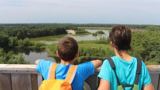 Panoràmica sobre els aiguamolls i boscos des de la torre-mirador a Bosland - Foto: YouMeKids