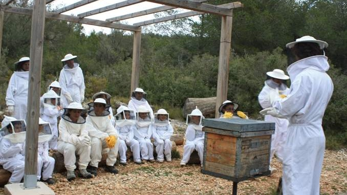 Fent apicultor a mel muria