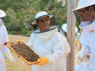 Fent d'apicultors a Mel Múria