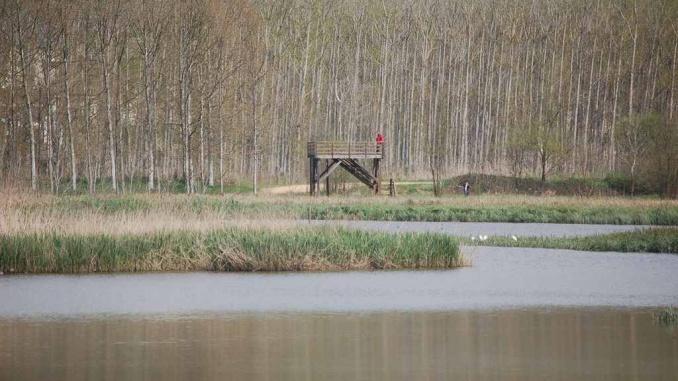Plataforma per observar l'estany de Sils i les aus - Foto: Enric Pàmies
